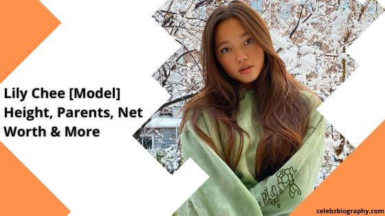 Lily Chee Wiki celebzbiography.com